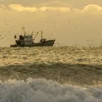 Рыбак на закате :: Алексей Яковлев