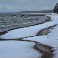 Первый снег :: Николай Кувшинов