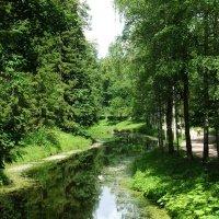 Каскадные пруды - одно из красивейших мест Павловского парка :: Александр Петров