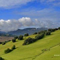 Утренние облачка в горах :: Виталий Половинко