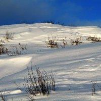 Снежные холмы... :: Роман *******