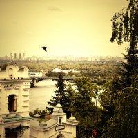 Киев :: Ольга Могдалёва