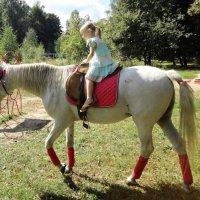 Девочка и лошадь :: Екатерина Василькова
