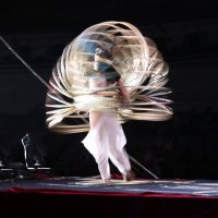 Все любят цирк! :: Наталья Агрикова