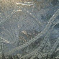 Рисует узоры мороз на оконном стекле :: Ирина Приходько