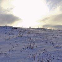 Зимний закат... :: Роман *******