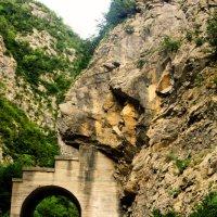 в горах Абхазии :: Юлия Лобанова