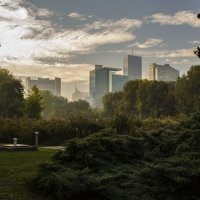 morning in the park :: Dmitry Ozersky