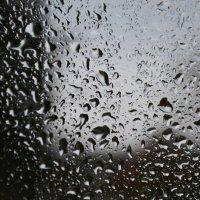 дождь :: Светлана ```````