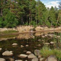 Северное лето.. :: ирина )))