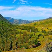 Горно - Алтайский  пейзаж :: Vlad Borschev