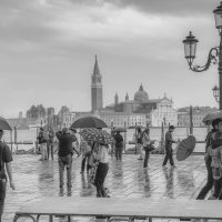Дождь :: juvent
