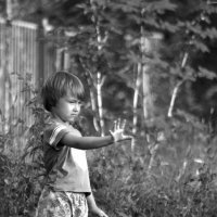 Я не волшебник, я только учусь! :: Ирина Данилова