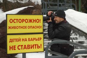 Урок фотографии. Фотосъемка в зоопарке