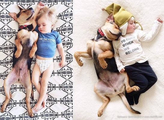 Милые дети и собачки - новый