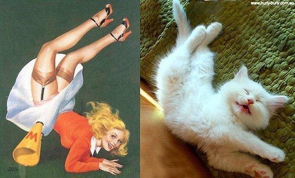 Коты подражают девушкам в стиле пинап
