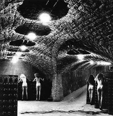 Хельмут Ньютон: женщины и вино