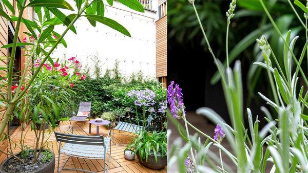 Озеленение террасы, или мини-ландшафтный дизайн