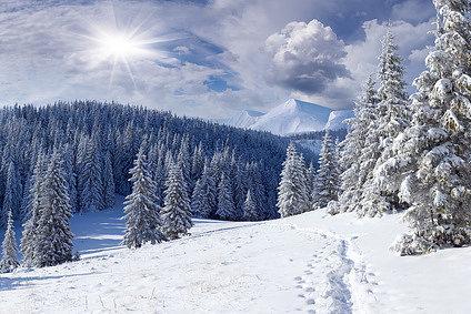 Фотоконкурс «Зимний пейзаж (2016)»
