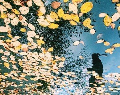 Фотоконкурс«У природы нет плохой погоды»