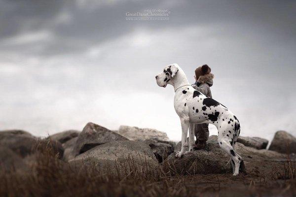 Фотограф Андрей Селиверстов