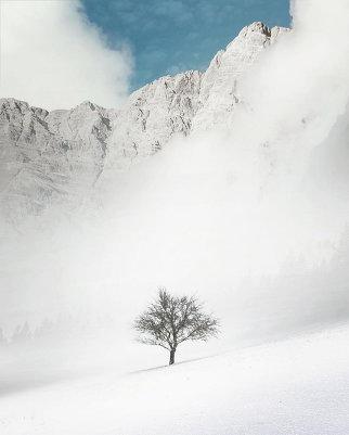 Фотограф Бенджамин Эверетт