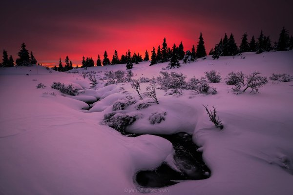 Фотограф Jоrn Allan Pedersen