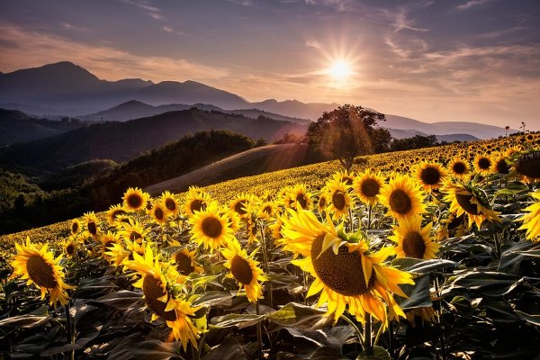 Красивые пейзажные фотографий со всей Земли