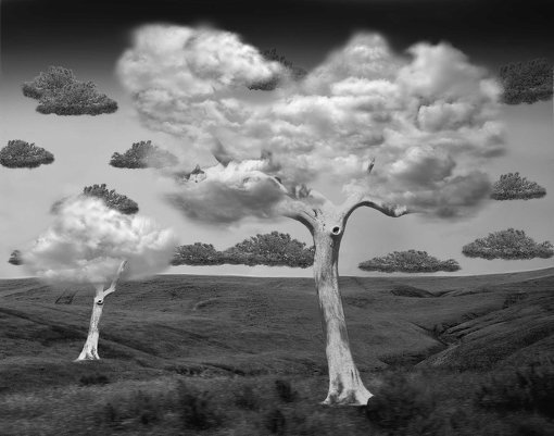 Thomas Barbey