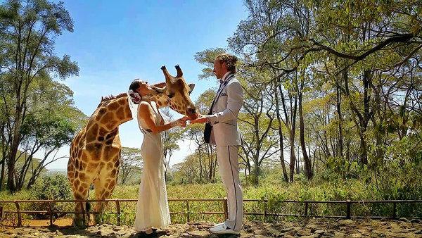 Пара акробатов женится в 38 разных местах по всему миру за 83 дня