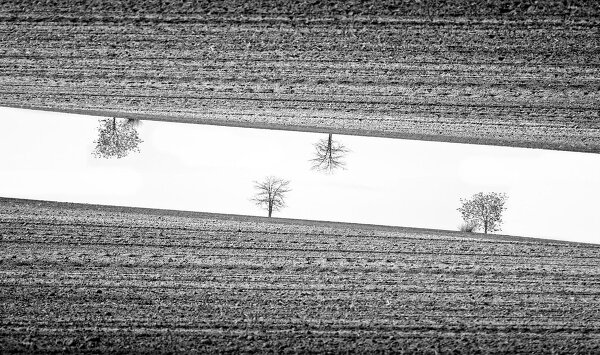 Симметрия и минимализм в фотографиях Адриенн Баласко