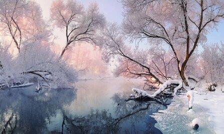 Итоги конкурса«Зимний пейзаж»