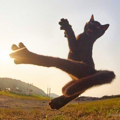 Японский фотограф Хисаката Хараюки исполнил мечту многих!