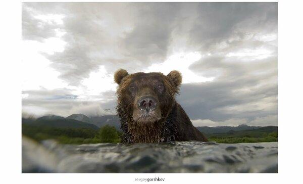 Сергей Горшков: «Все это ради единственной фотографии!» (Часть 2)
