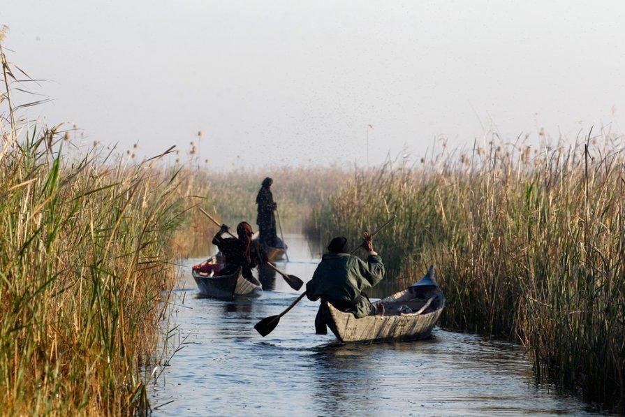 лодка в ираке