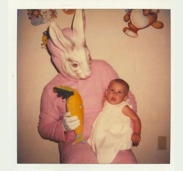 Приколы картинки кролики