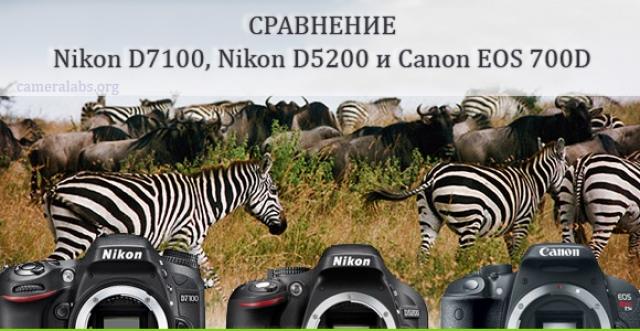 Обзор Canon EOS 1100D – тест цифрового фотоаппарата, отзывы и впечатления, технические характеристики, функции, тестовые снимки, сравнение с Canon EOS