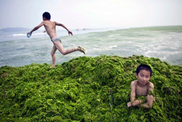 пляж Циндао, Китай (фото:Nir Elias)