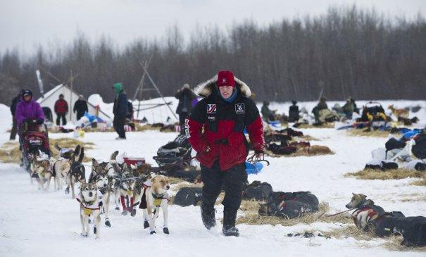 Алий Зиркл в своей упряжке(фото:Marc Lester)