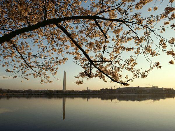 США, Вашингтон, фото:Karen Kasmauski