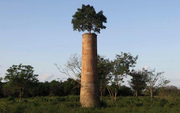 г.Асунсьон, Парагвай, фото:Jorge Saenz