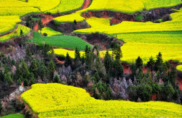 провинция Юньнань, Китай