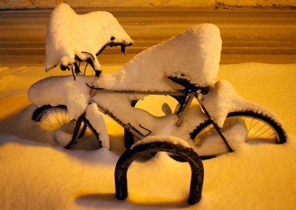 """""""Велосипед в ожидании лета"""" (фото:Joshua Lott)"""