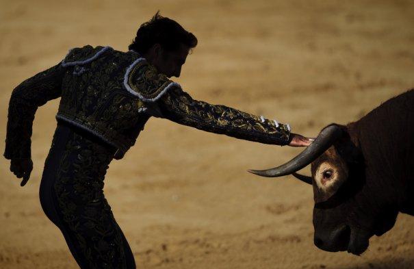 Матадор пытается усмирить быка. Фото:Daniel Ochoa de Olza