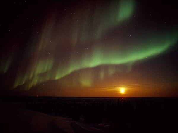Северное сияние на закате, фото: Norbert Rosing