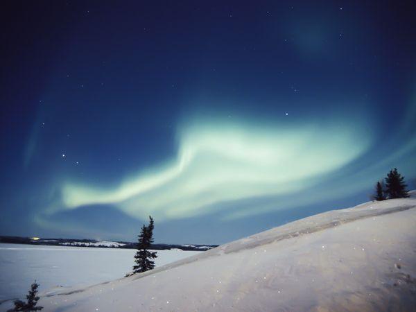 фото:Paul Nicklen