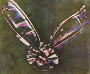 Самая первая цветная фотография