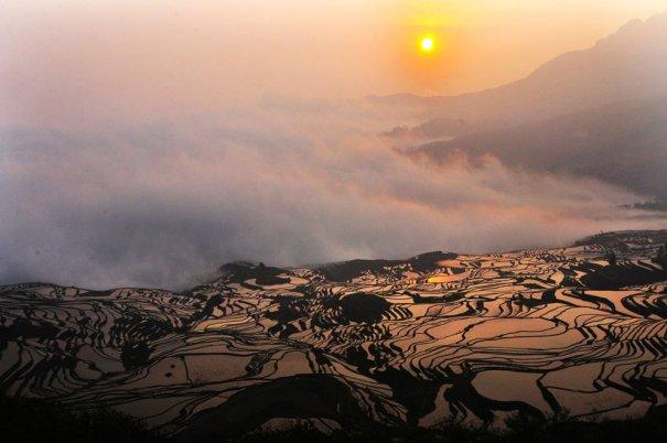 Рисовые поля, провинция Юньань