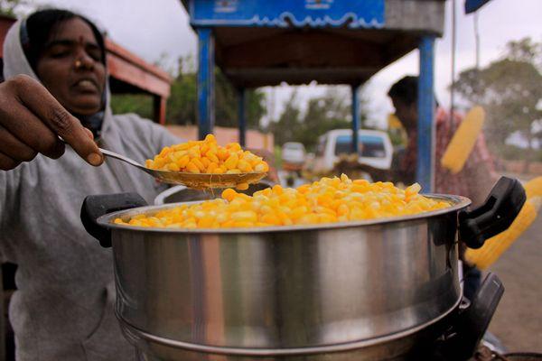 Тамилнаду, Индия, фото:  Thirumurugan Ponnusamy
