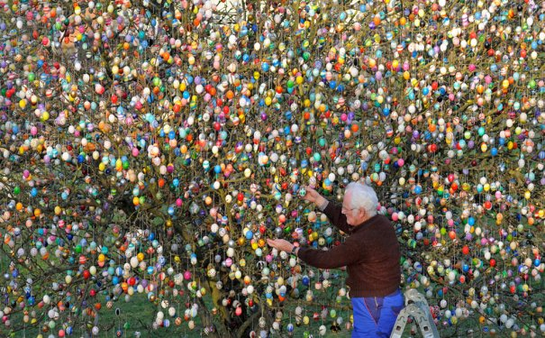 Пасхальное дерево , Германия